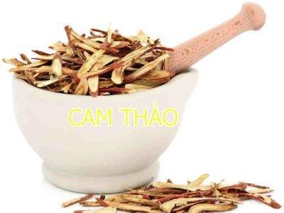CAM THẢO