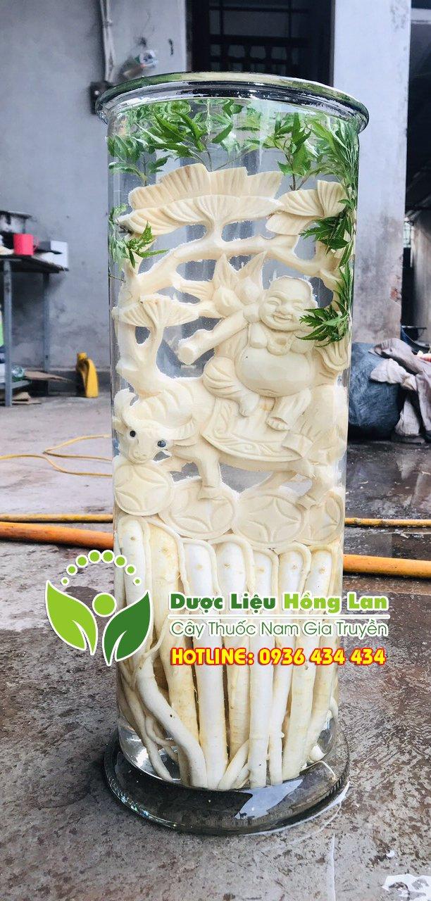 bình đinh lăng điêu khắc loại bình 12,15,19,25 lít