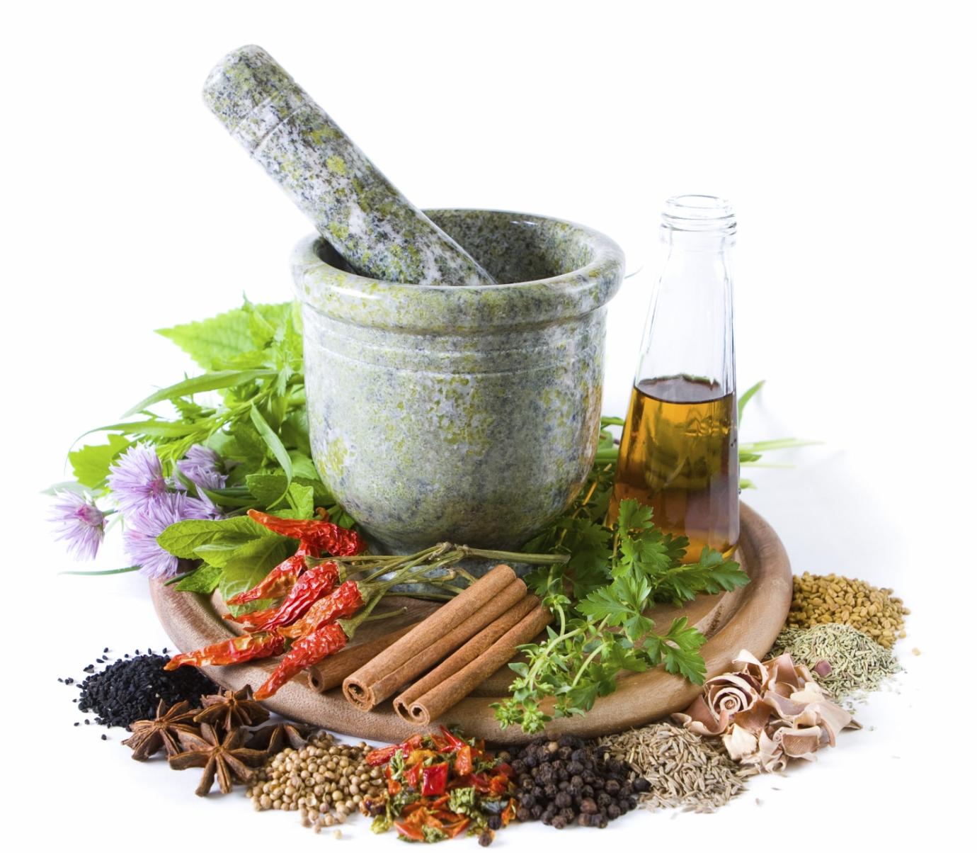 công dụng và tác dụng chữa bệnh của cây thuốc nam