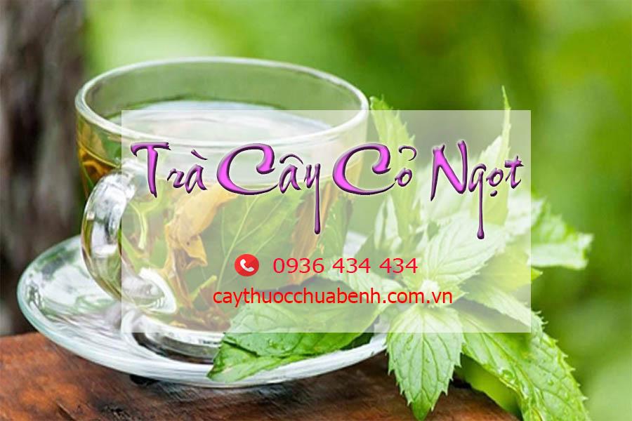 TRA CAY CO NGOT