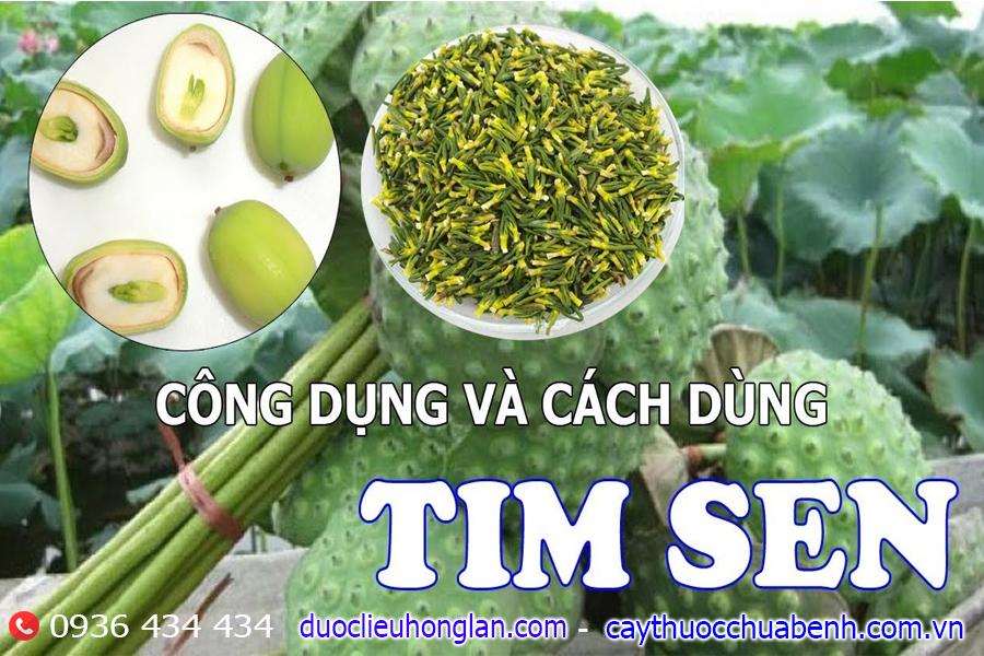 CONG DUNG VA CACH DUNG TIM SEN