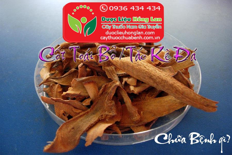 TAC_KE_DA_COT_TOAI_BO_CHUA_BENH_GI_DUOC_LIEU_HONG_LAN