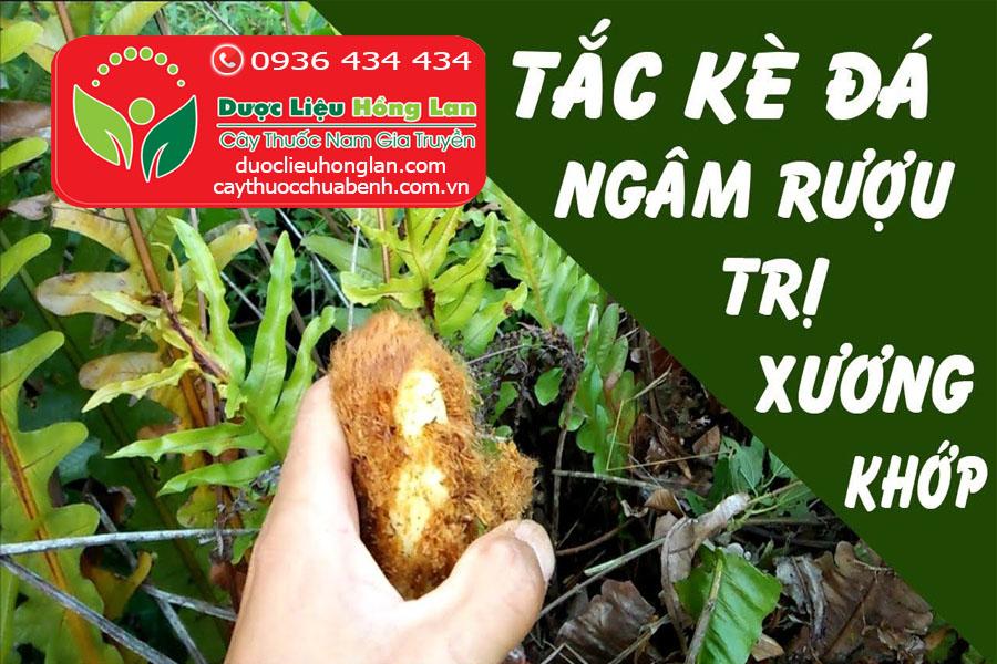 TAC_KE_DA_COT_TOAI_BO_DUOC_LIEU_HONG_LAN