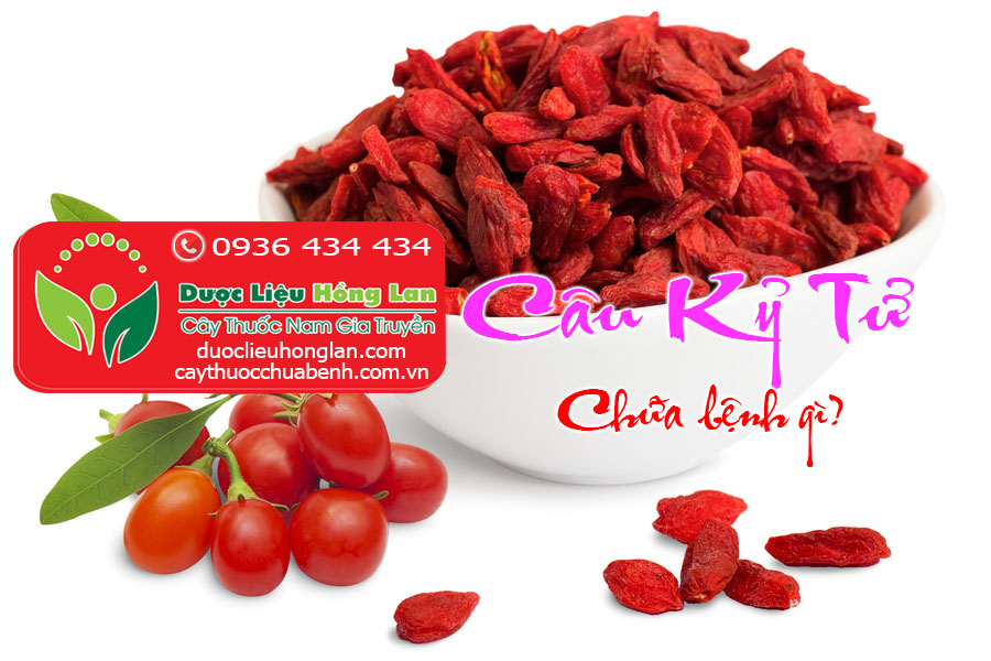 CAU_KY_TU_CHUA_BENH_DUOC_LIEU_HONG_LAN