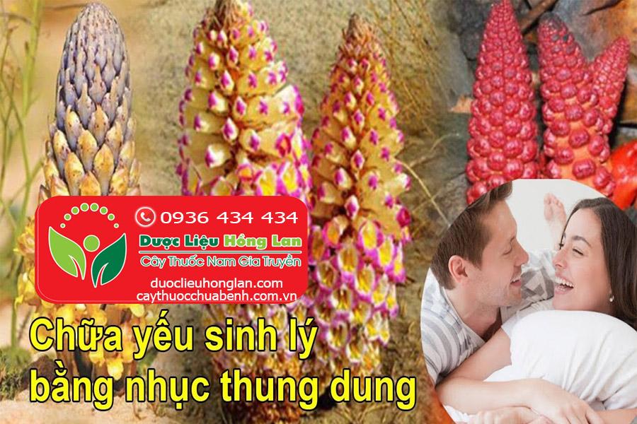 CONG_DUNG_CACH_DUNG_NHUC_THUNG_DUNG_DUOC_LIEU_HONG_LAN