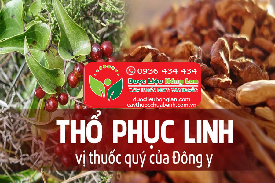 MUA_BAN_THO_PHUC_LINH_KHO_DUOC_LIEU_HONG_LAN