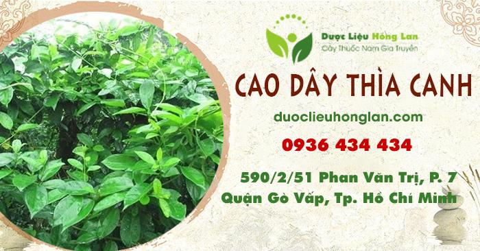 cao-thuoc_cay_day_thia_canh_duoclieuhonglan