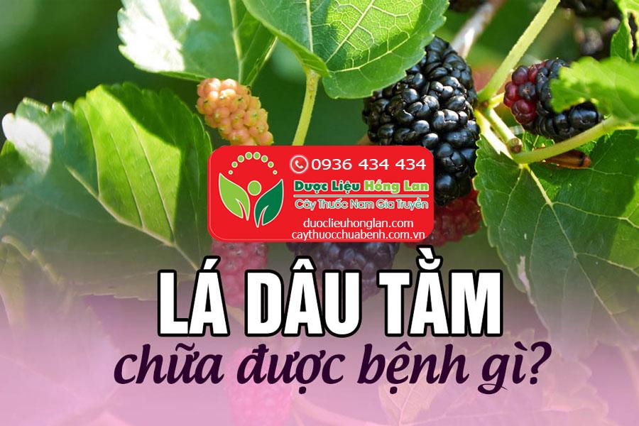 LA-DAU-COC-TAC-DUNG-GI-CTY-DUOC-LIEU-HONG-LAN