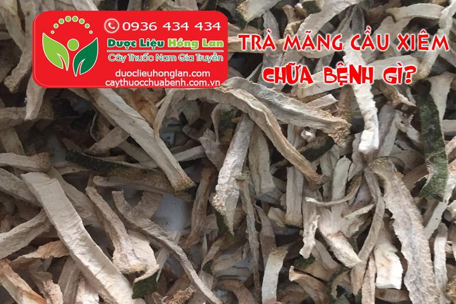 TRA-MANG-CAU-XIEM-CHUA-BENH-GI_DUOC_LIEU_HONG_LAN