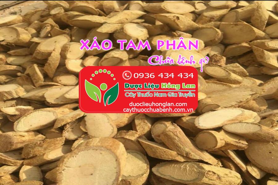 XAO-TAM-PHAN-CHUA-BENH-GI-DUOCLIEUHONGLAN