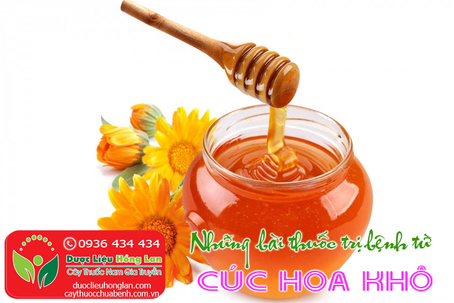 BAI-THUOC-CHUA-BENH-TU-TRA-CUC-HOA-CTY-DUOC-LIEU-HONG-LAN