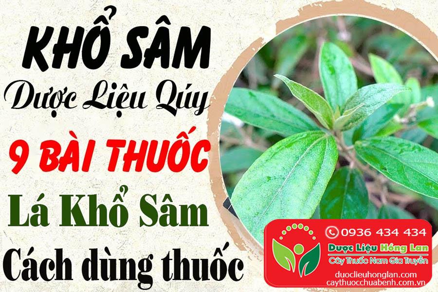 KHO-SAM-CO-TAC-DUNG-GI-CTY-DUOC-LIEU-HONG-LAN