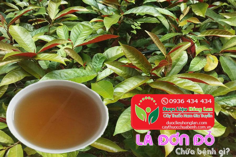 LA-DON-DO-CHUA-BENH-GI-CTY-DUOC-LIEU-HONG-LAN