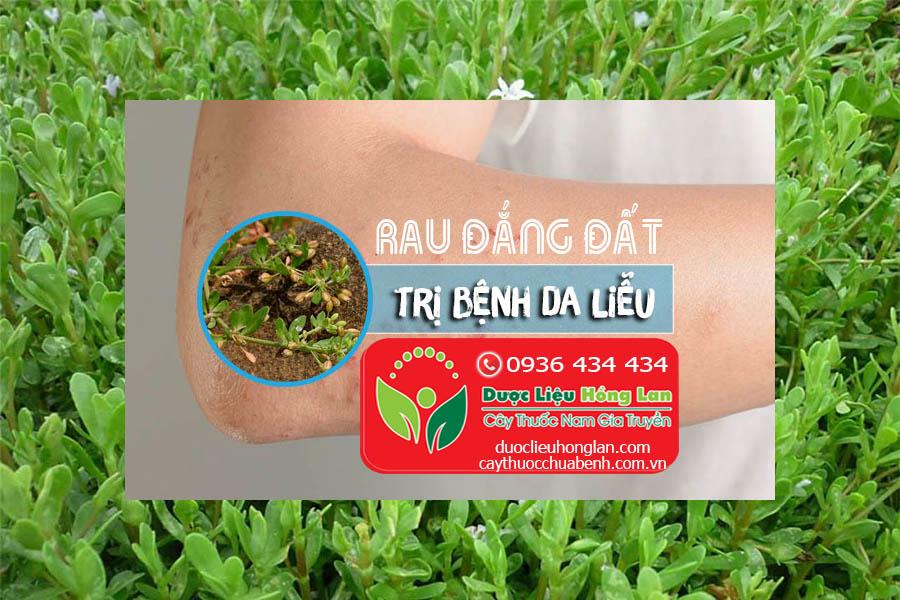RAU-DANG-DAT-CHUA-BENH-DA-LIEU-CTY-DUOC-LIEU-HONG-LAN