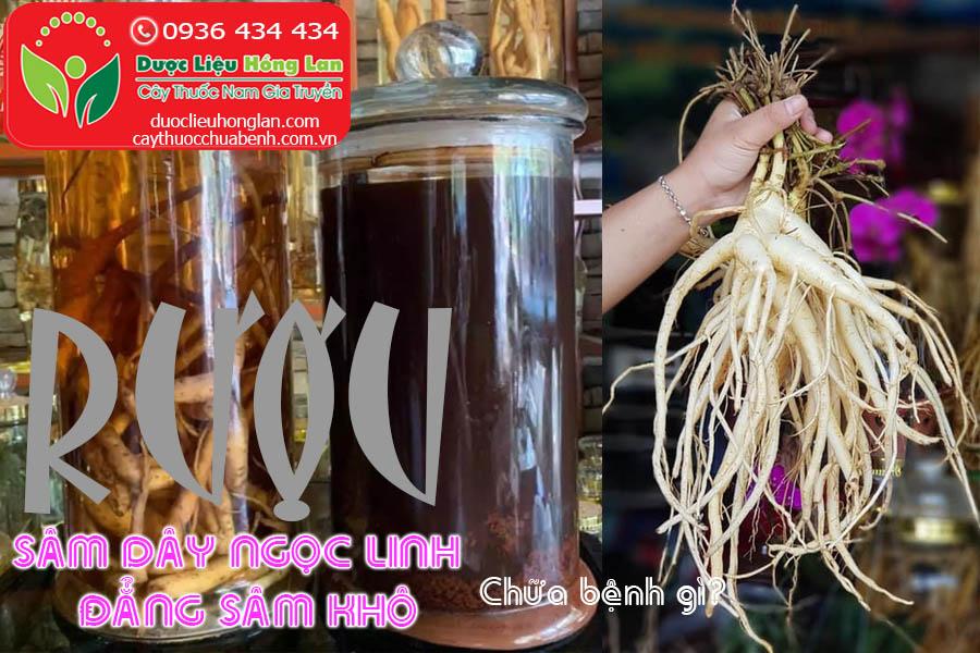 RUOU-SAM-DAY-NGOC-LINH-DANG-SAM-CHUA-BENH-GI-CTY-DUOC-LIEU-HONG-LAN