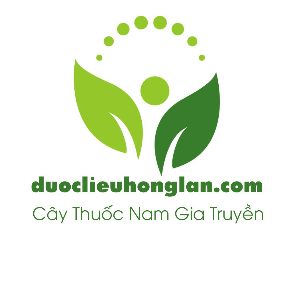 cong ty duoc pham hong lan