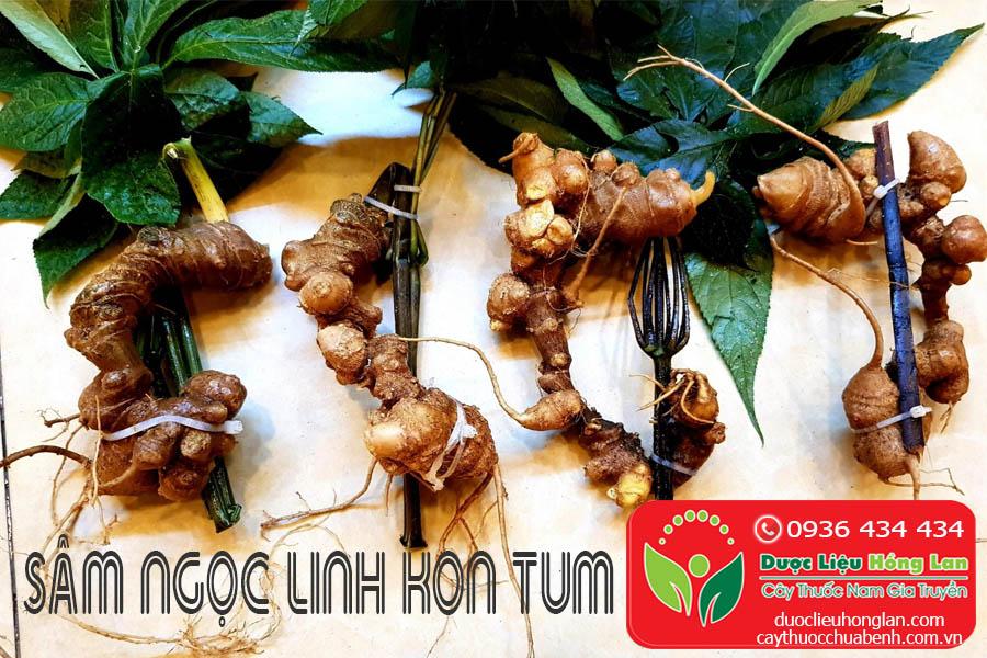 CU-SAM-NGOC-LINH-KON-TUM-CTY-DUOC-LIEU-HONG-LAN