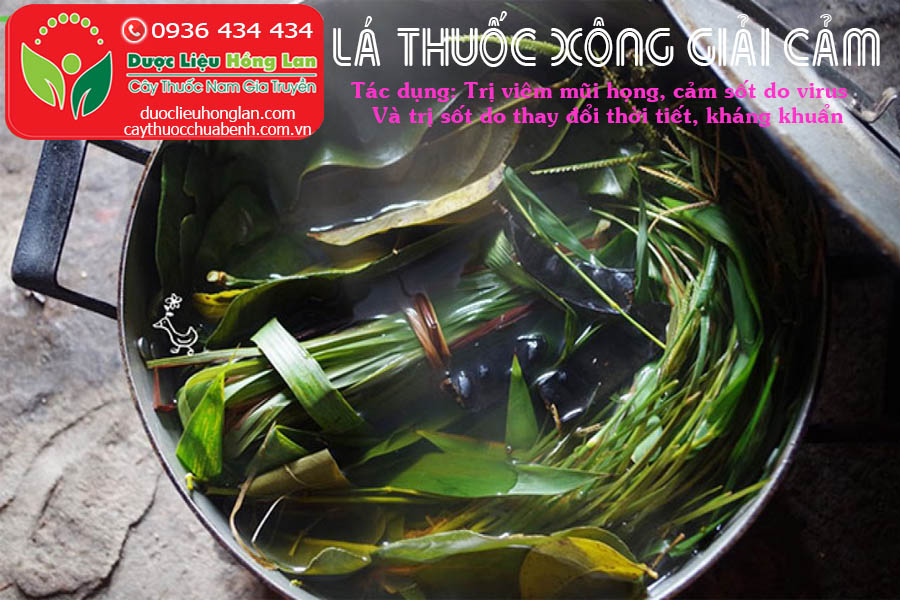 LA-THUOC-XONG-TRI-CAM-SOT-CTY-DUOC-LIEU-HONG-LAN