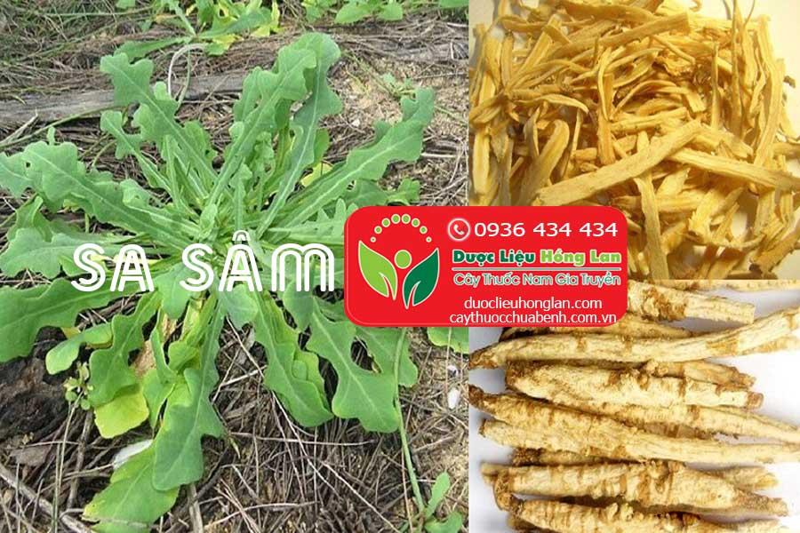 SA-SAM-CTY-DUOC-LIEU-HONG-LAN