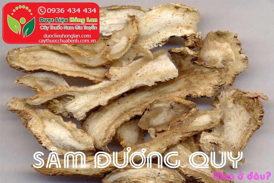 SAM-DUONG-QUY-KHO-MUA-O-DAU-CTY-DUOC-LIEU-HONG-LAN