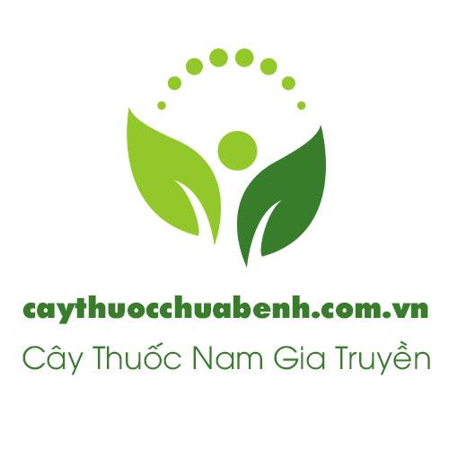 logo-caythuocchuabenh - Cty-duoc-lieu-hong-lan