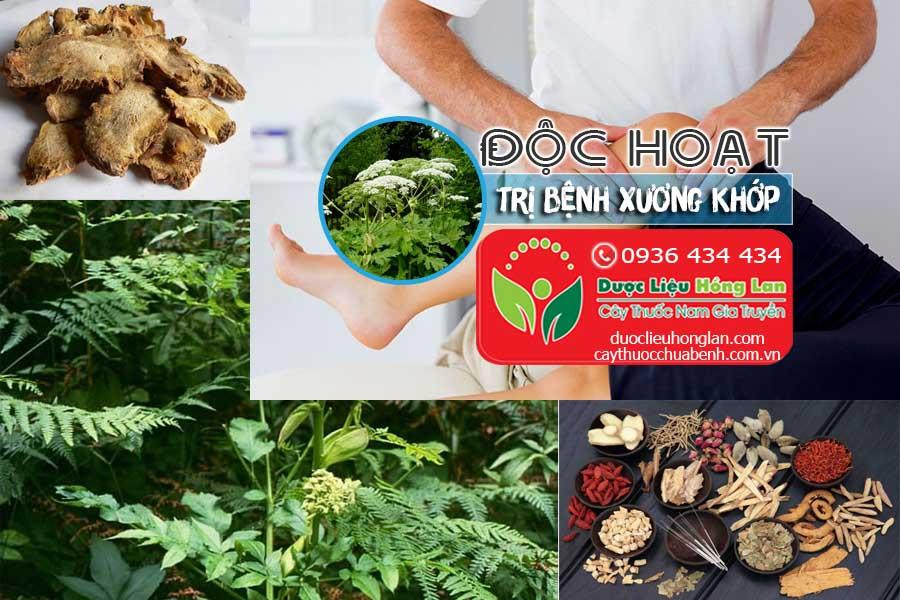 CAY-THUOC-DOC-HOAT-TRI-BENH-XUONG-KHOP-CTY-DUOC-LIEU-HONG-LAN