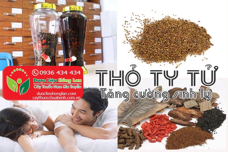VI-THUOC-THO-TY-TU-TANG-CUONG-SINH-LY-NAM-GIOI-CTY-DUOC-LIEU-HONG-LAN