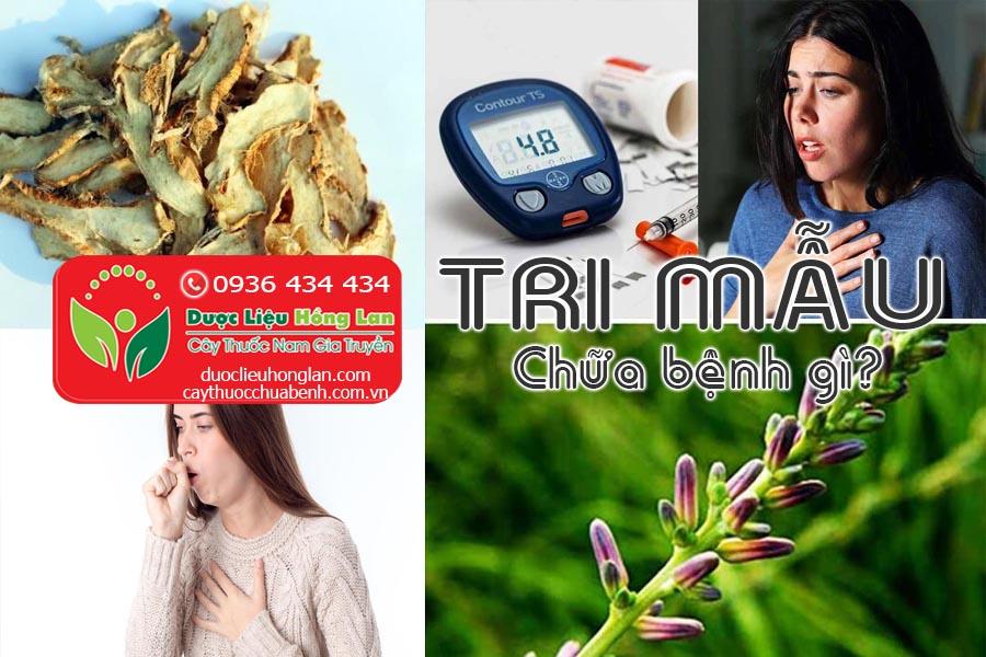 VI-THUOC-TRI-MAU-CHUA-BENH-GI-CTY-DUOC-LIEU-HONG-LAN